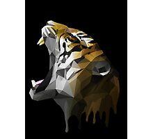 Polygon Tiger Photographic Print