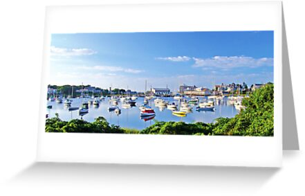 Wychmere Harbor by Jack DiMaio