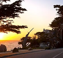 Pacific sunset at Pebble Beach California by MarkEmmerson