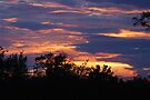 Sunset June 1 2009 by barnsis