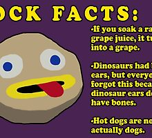 Fact Rock, WITH FACTS! by HomicidalHugz