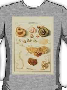 Neues systematisches Conchylien-Cabinet - 085 - Tubi Vermiculares testacei T-Shirt