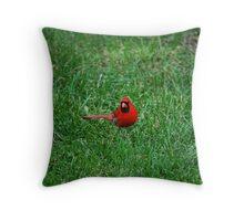 Male Cardinal... Throw Pillow