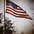 Old Glory by A.R. Williams