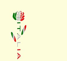 Italia Flag Rose Flower by AuntieShoe