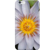 Blue, golden-centred water lily iPhone Case/Skin