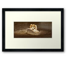 Like an Explosion Framed Print