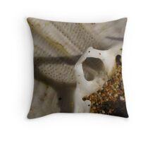 Urchin skeleton  Throw Pillow