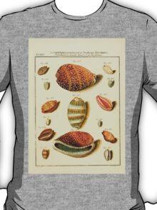 Neues systematisches Conchylien-Cabinet - 108 - Porcellanae Spirales Tenues et Pyriformes T-Shirt