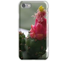 Prickle Pear Cactus Bloom  iPhone Case/Skin