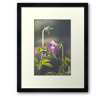 First To The Party Framed Print