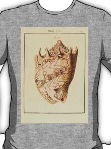 Neues systematisches Conchylien-Cabinet - 114 - Volutae T-Shirt