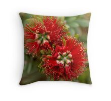 Bottle_Brush_2 Throw Pillow
