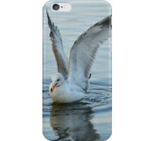 Seagull | Center Moriches, New York  iPhone Case/Skin