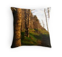 Path to Secret Sunrise Throw Pillow