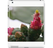 Prickle Pear Cactus Bloom  iPad Case/Skin
