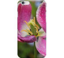 Beautiful Tulip iPhone Case/Skin