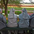 Nuns at Keukenhof Gardens by Alison Cornford-Matheson