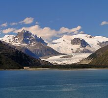 Beagle Channel, Tierra del Fuego by Christopher Biggs