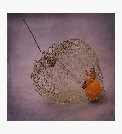 Physalis - Amour en cage Photographic Print