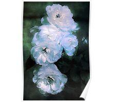 Moonlit Roses Poster
