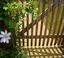 Garden Gate - SMALLTOWN USA series ^ by ctheworld