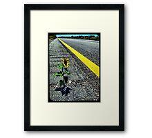 Hitchhiker Framed Print