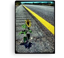 Hitchhiker Canvas Print