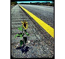 Hitchhiker Photographic Print