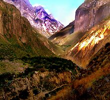 Colca Canyon, Peru by Tamara Travers