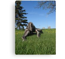 Sssssnake in the Grass 10 Canvas Print