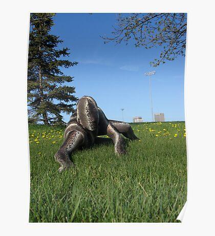 Sssssnake in the Grass 10 Poster