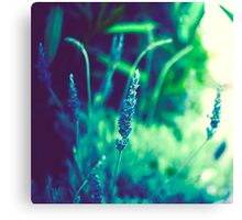 ...in movement there is life, and in change there is power Canvas Print