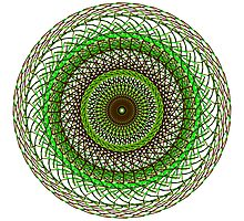 Green and Brown Swirl Photographic Print