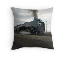 844 Cheyenne Throw Pillow