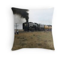 844 South of Cheyenne Throw Pillow