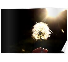 Wishes at my fingertips Poster