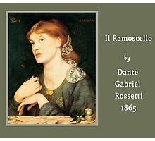 Il Ramoscello Photographic Print