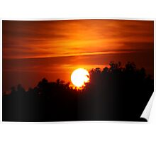 Silhouetted Sunset Poster