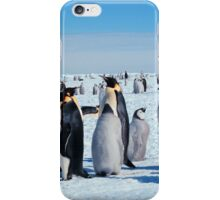 Young Emperor Penguin iPhone Case/Skin