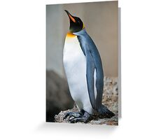 emperor penguine Greeting Card