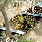 Vietnam Reflection by Richard Stephan Bergquist