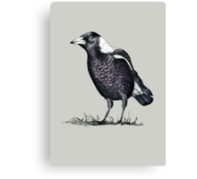 Magpie - Dedicated to family Canvas Print