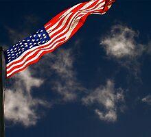 Flag III by Louise Fahy