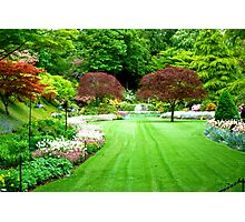 A View of Sunken Garden in Springtime! Photographic Print