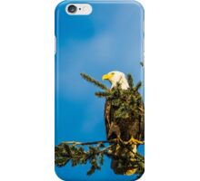 Just Eagles iPhone Case/Skin
