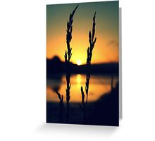 Antlers cradle the sun as it dips low to bathe the other half with light Greeting Card