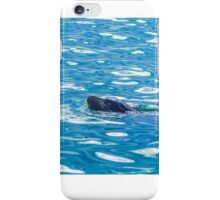 Seal into the blue iPhone Case/Skin