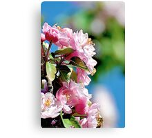 Spring into Bloom Canvas Print