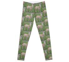 Freaking Llama leggings1!1!!!!1! Leggings
